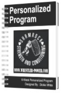 Personalized Lifting Program For Wrestlers - an image of a personalized program offered on Wrestler-Power.com