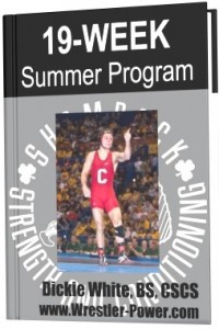 Wrestling Exercise Program - this image of an eBook features a 19-week summer lifting program for wrestlers